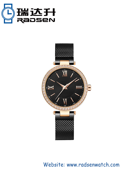 Women Mesh Watches IP Plating
